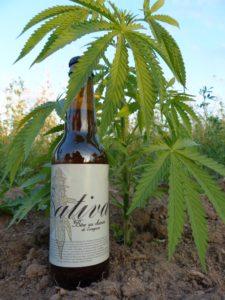Sativa bière au chanvre